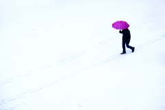 Man-with-Pink-Umbrella
